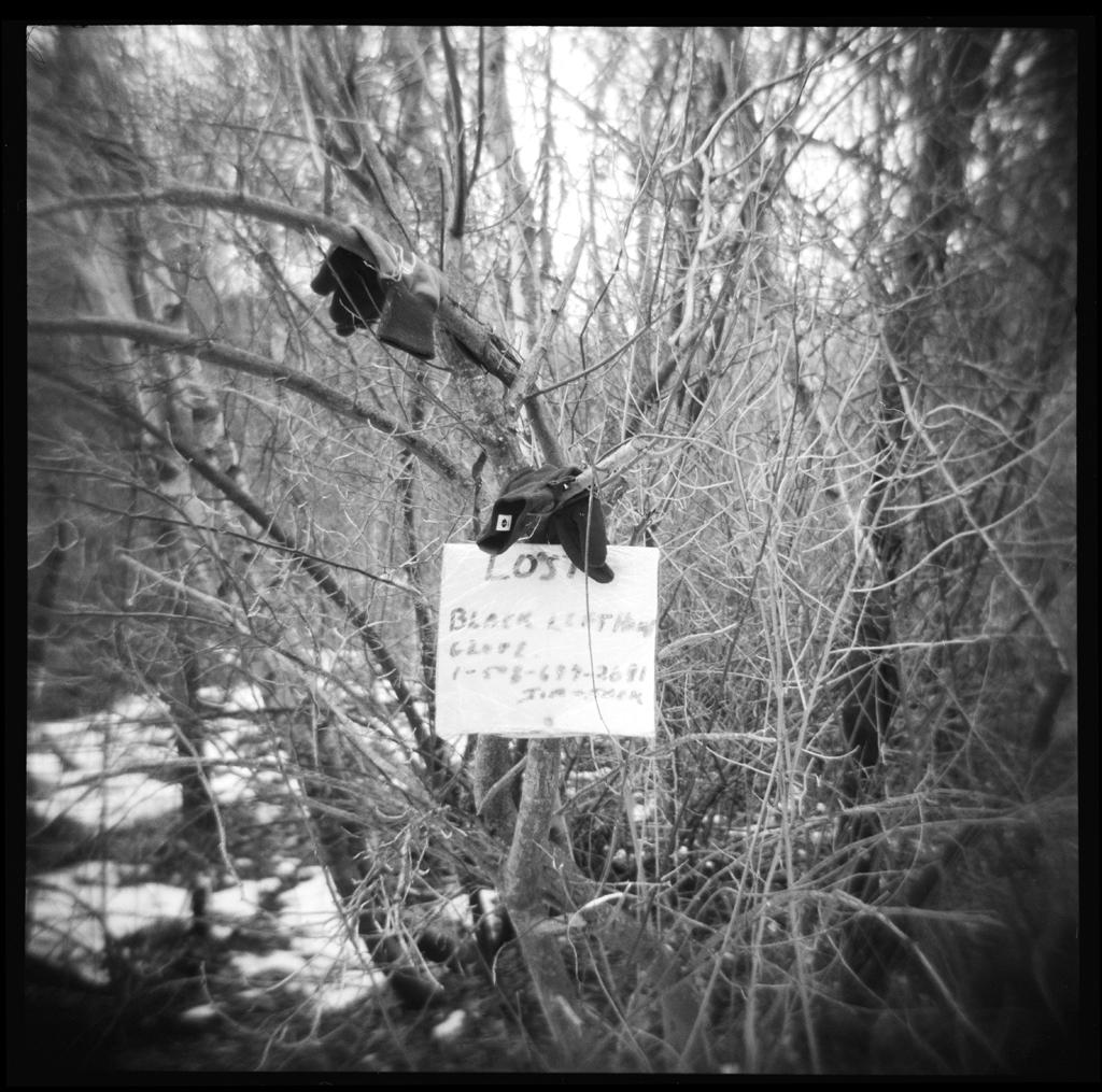 Lost glove , HP5 Plus, Holga     Nicholas Schietromo