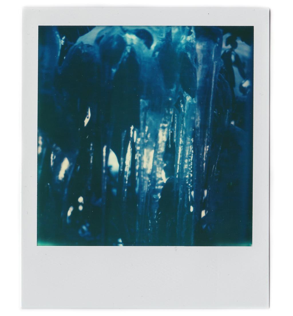 Icicles, SX-70.    Nicholas Schietromo