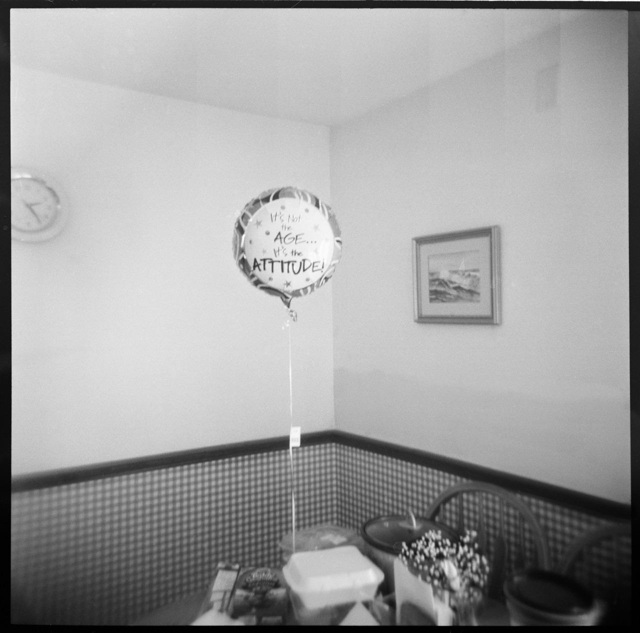 Aged Balloon , Holga, HP5    Nick Schietromo