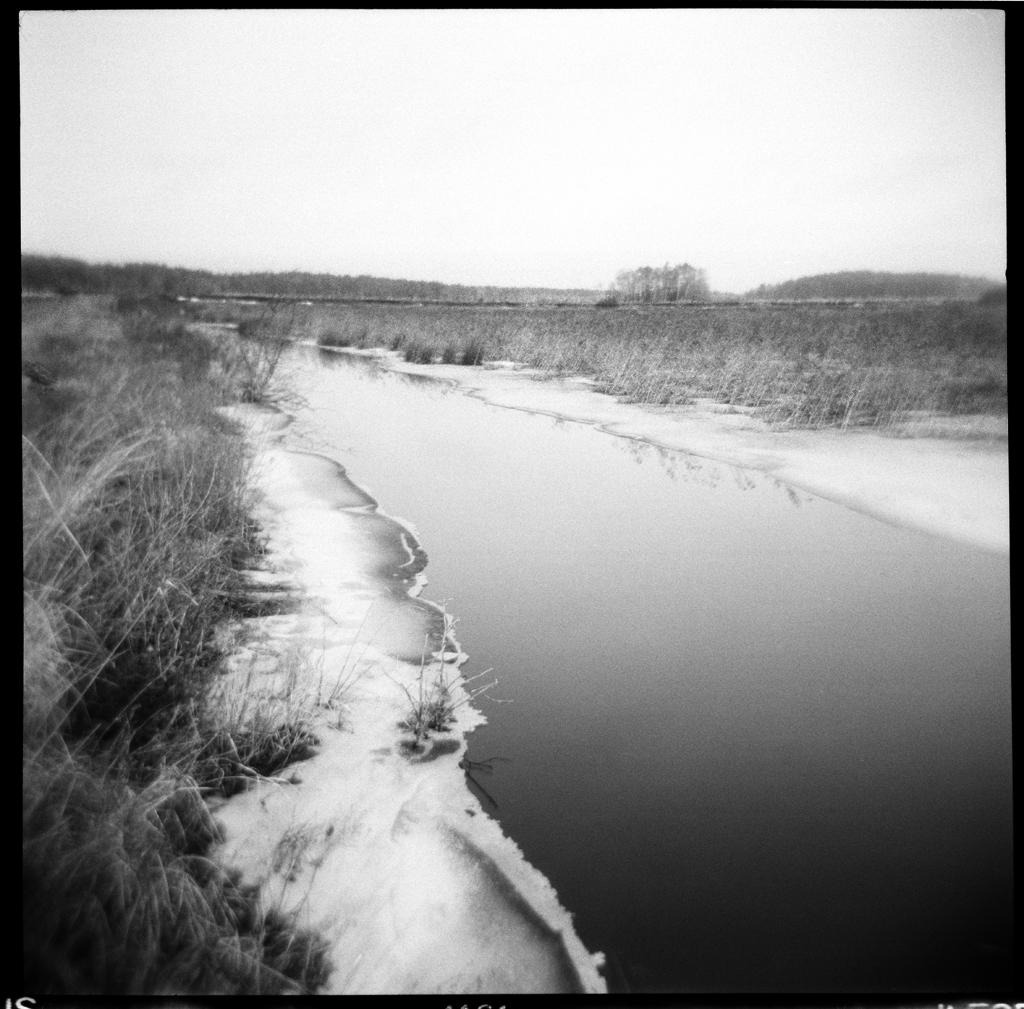 Stream , HP5 Plus, Holga     Nicholas Schietromo