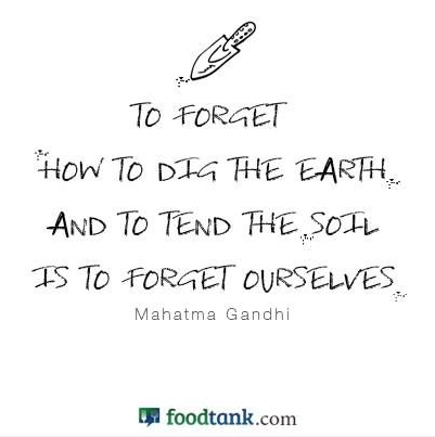 More inspiring quotes   about keeping our main food sources local.