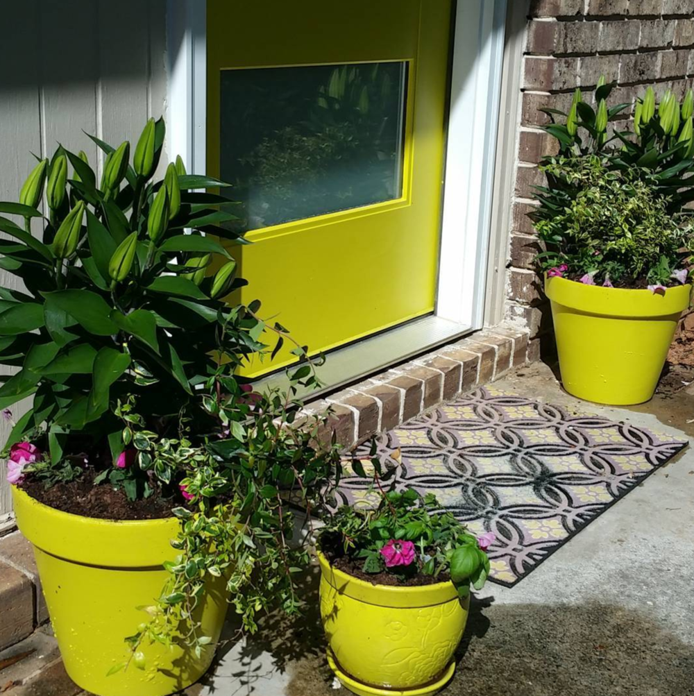 New front door and potted plants.