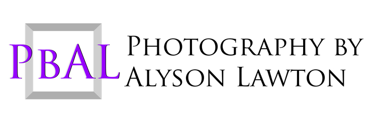 Photography by Alyson Lawton