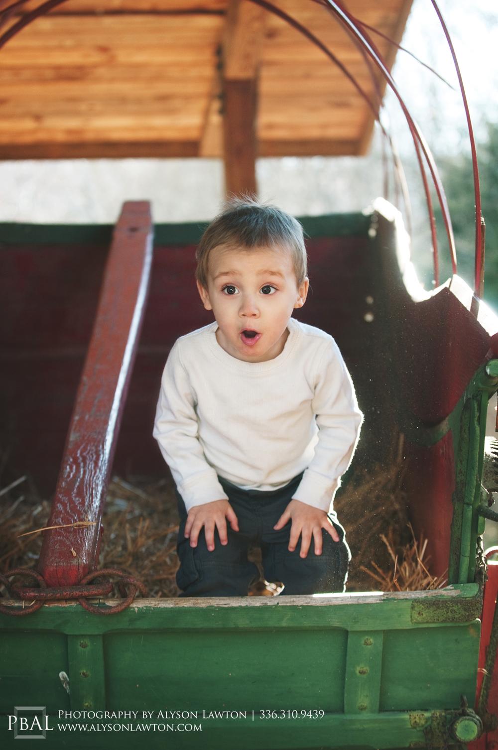 Family Portrait Photography | Bobie & Bo | Winston Salem, NC | Photography by Alyson Lawton | alysonlawton.com