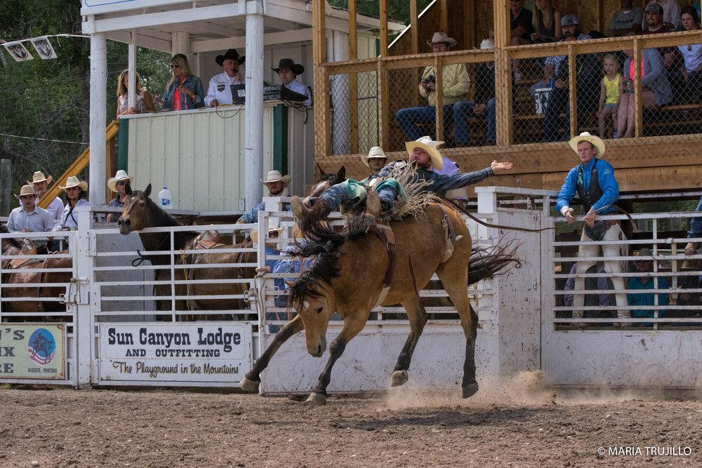 augusta rodeo 2016-33.jpg