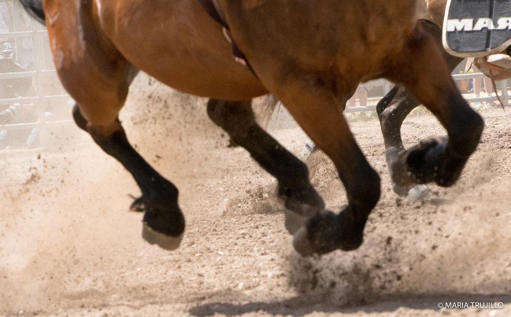 augusta rodeo 2016-42.jpg