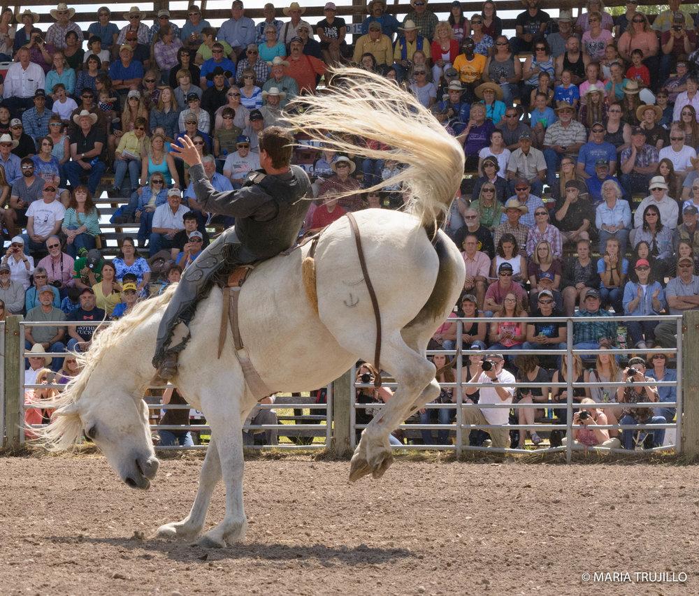 augusta rodeo 2016-44.jpg