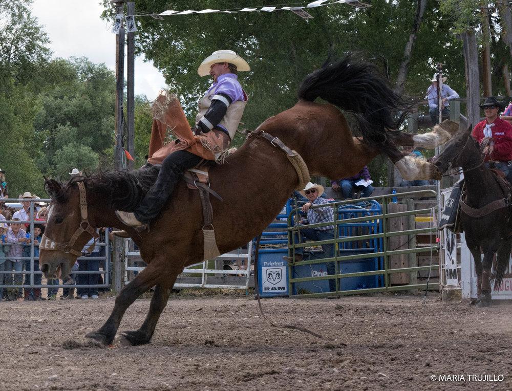 augusta rodeo 2016-37.jpg