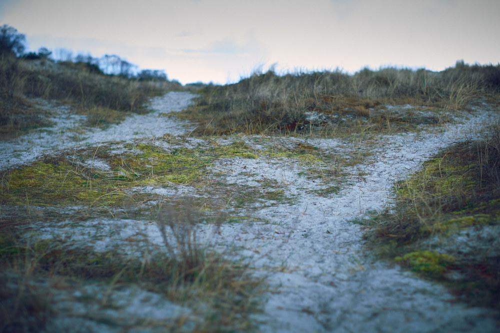 Ett besök på stranden i Falsterbo. Vädret var minst sagt omväxlande. En del av den medhavda fikan fick intas i bilen.