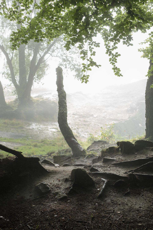 djupkänslan förstärks av dimman, man får så många nivåer i landskapet, och först nu upptäcker jag den gigantiska fallosymbolen, hahaha