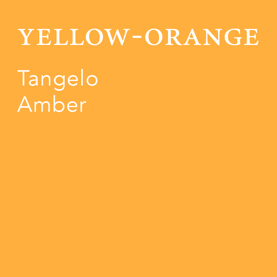 Yellow-Orange.jpg