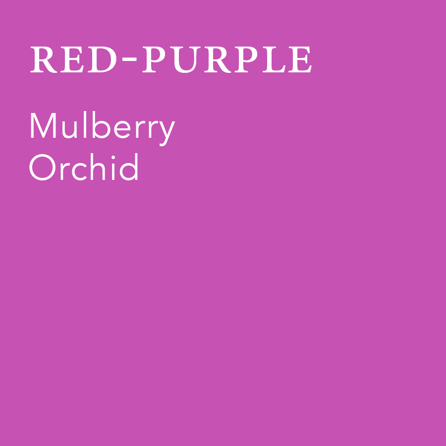 Red-Purple.jpg