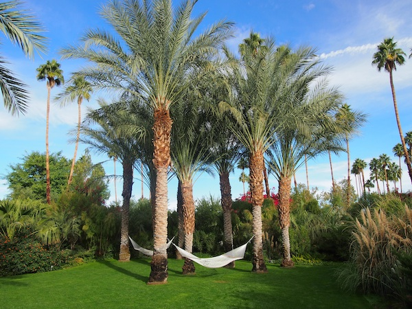 Hammocks strewn throughout the grounds help guests getaway from the busy pool scene to read a book or take an afternoon nap.