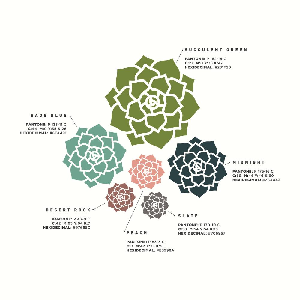 succulent-logo-color.png