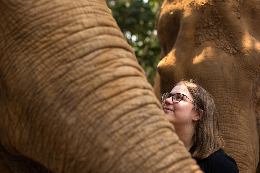 ElephantNaturePark-7647.jpg