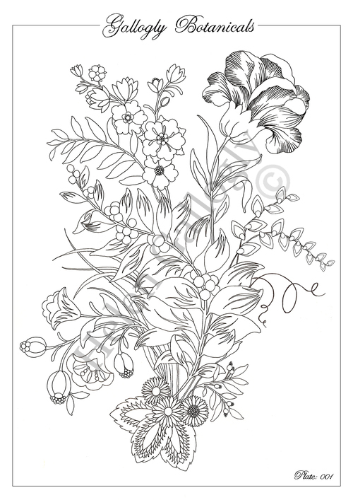 colouringindownloadsample.jpg