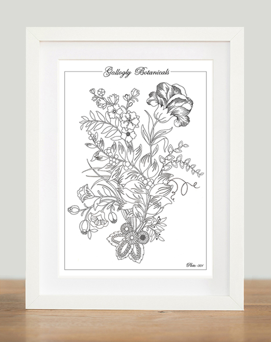 Gallogly Botanicals Colouring In Print
