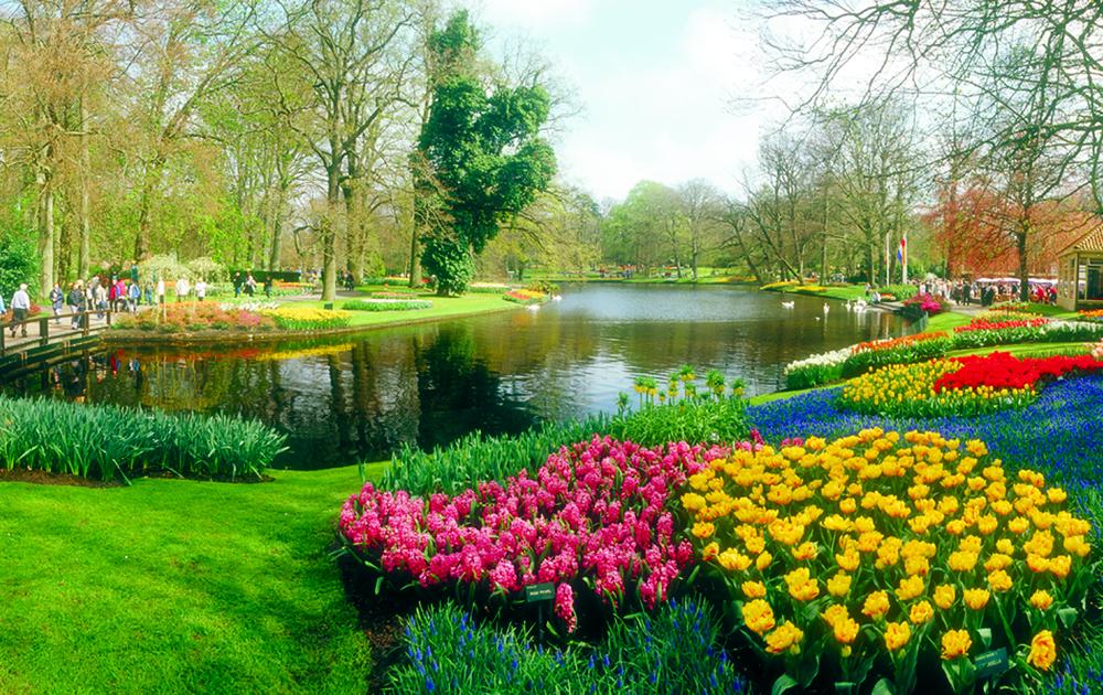 Holland - Keukenhof - Gardens.jpg
