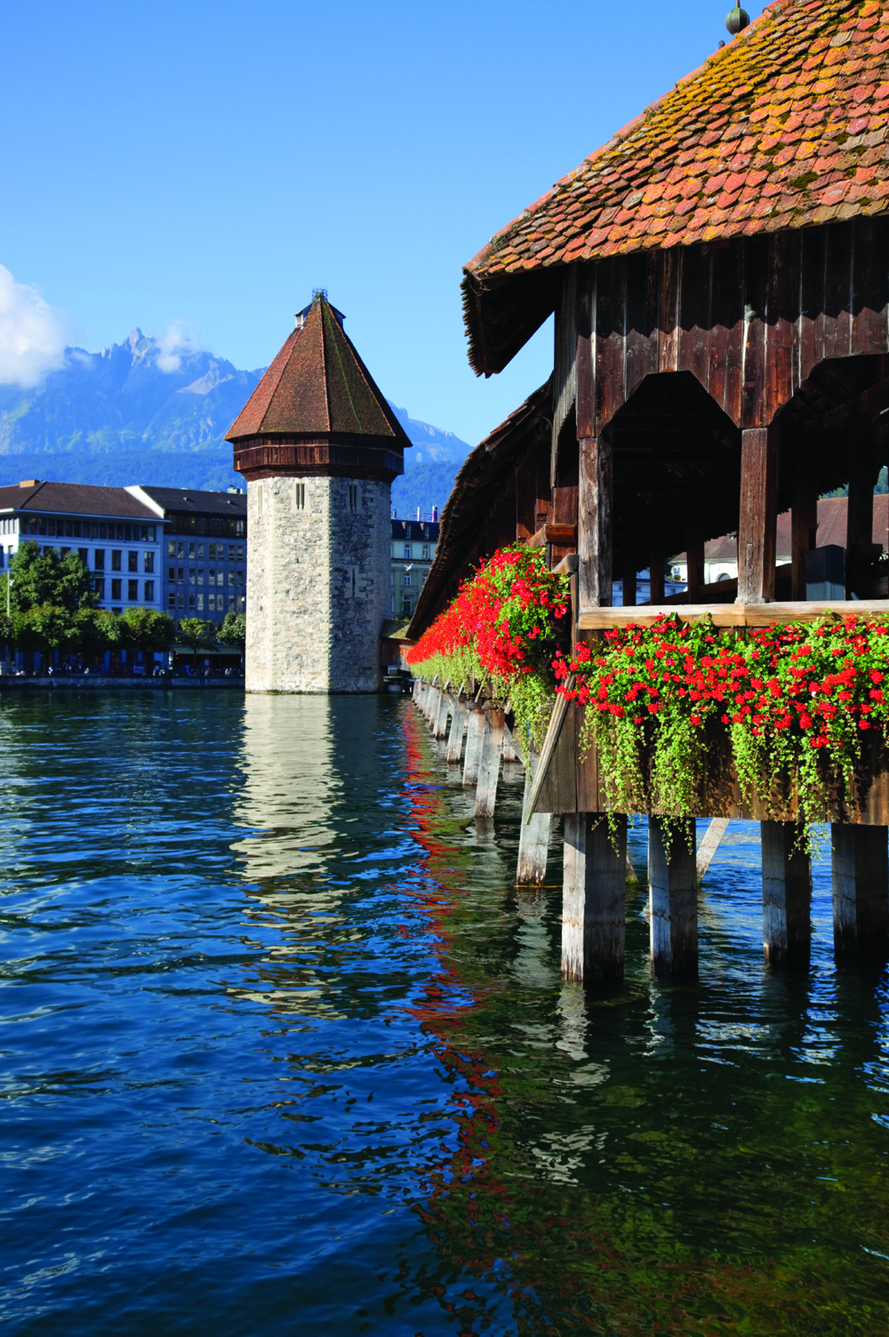 Lucerne.jpg