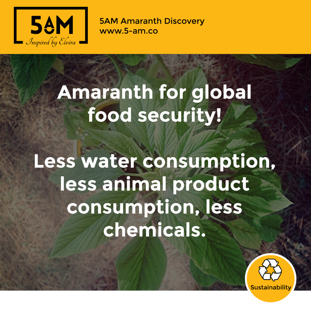 Amaranth for global food security