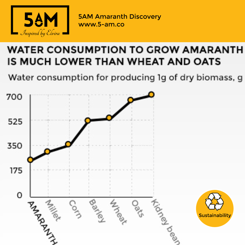 Amaranth has a low water consumption