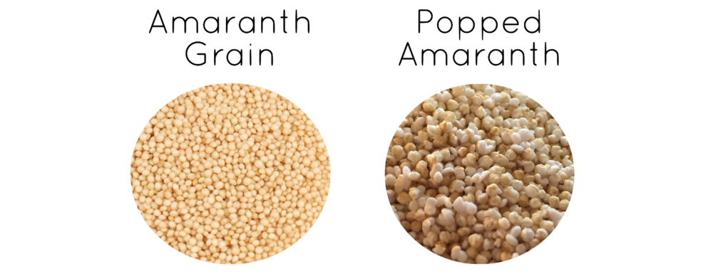 Amaranth vs Popped Amaranth