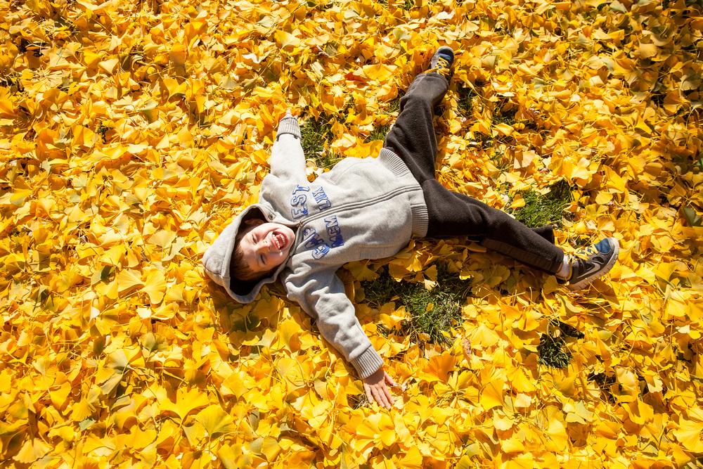 Fall2014-9957.jpg