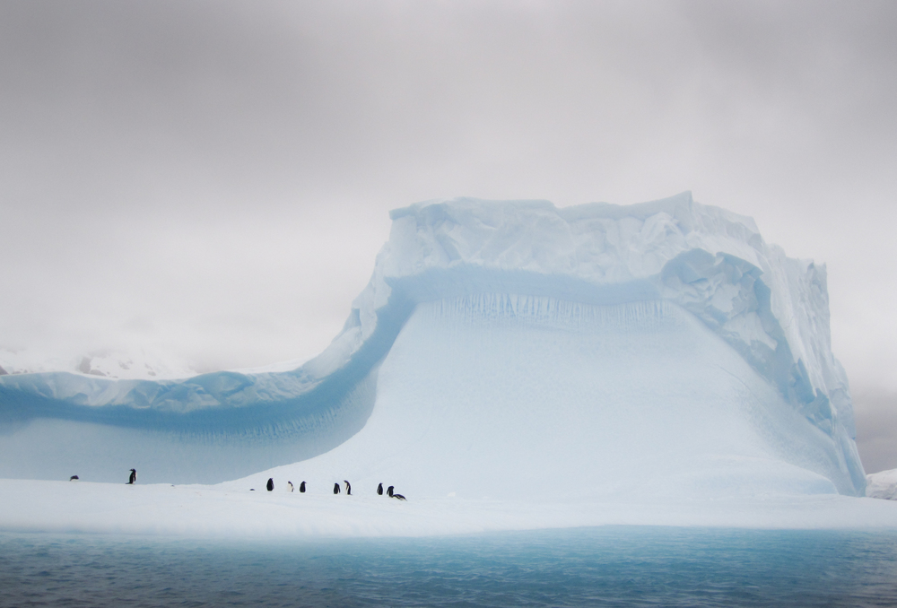 Pleneau Island, Antarctica