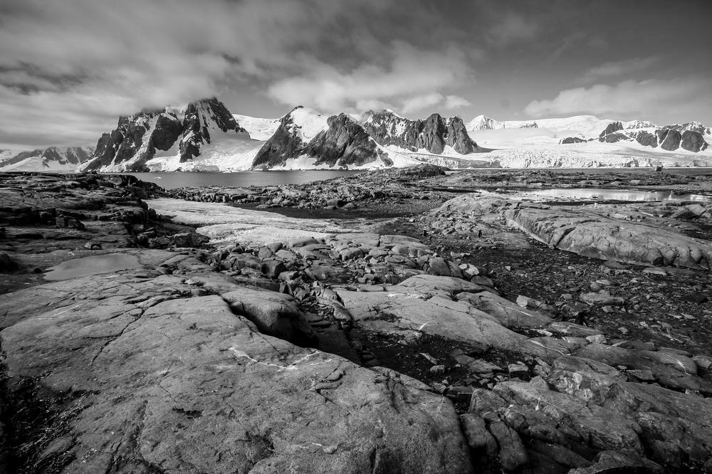 antarctica2013 (23 of 236).jpg
