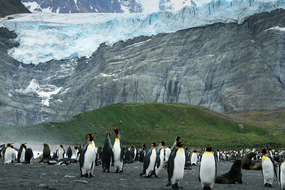 antarctica2013 (74 of 236).jpg