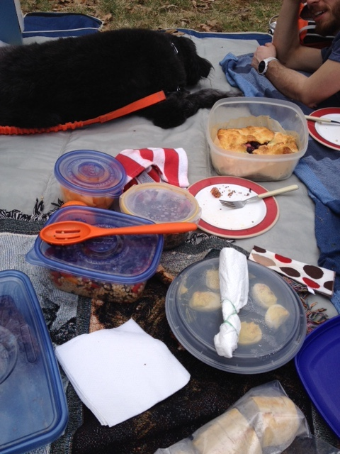 Picnic with dog and pie.