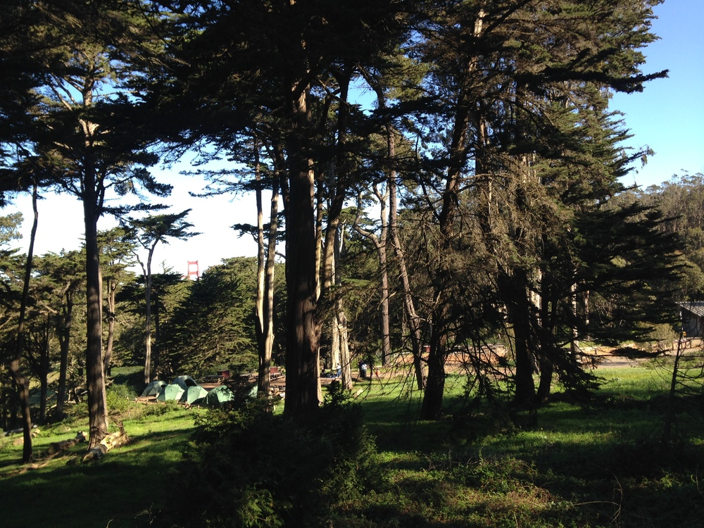 Rob Hill Campground in San Francisco is the perfect setting for our National Summit