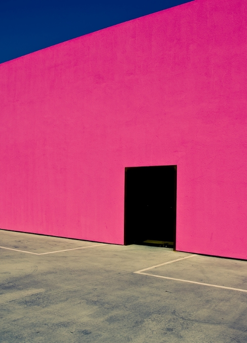 David Jordan Williams - pink