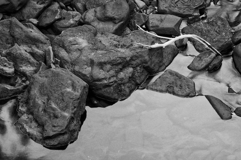 White branch lying on sticks in tthe river
