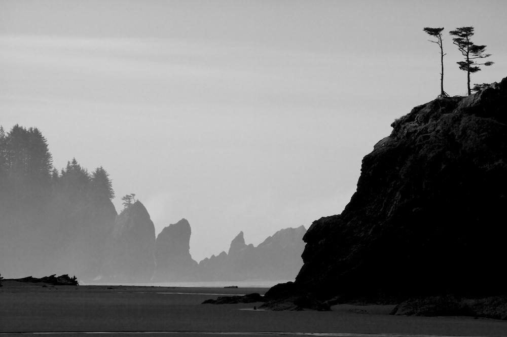 Sea stacks on the beach at sunrise, Second Beach, Olympic National Park, Washington