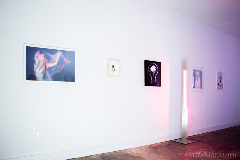 IMG_4422_ & GALLERY %22Art Show From The Future%22 Jan 2015- © David Gary Lloyd.jpg
