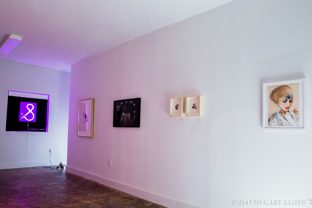 IMG_4439_ & GALLERY %22Art Show From The Future%22 Jan 2015- © David Gary Lloyd.jpg