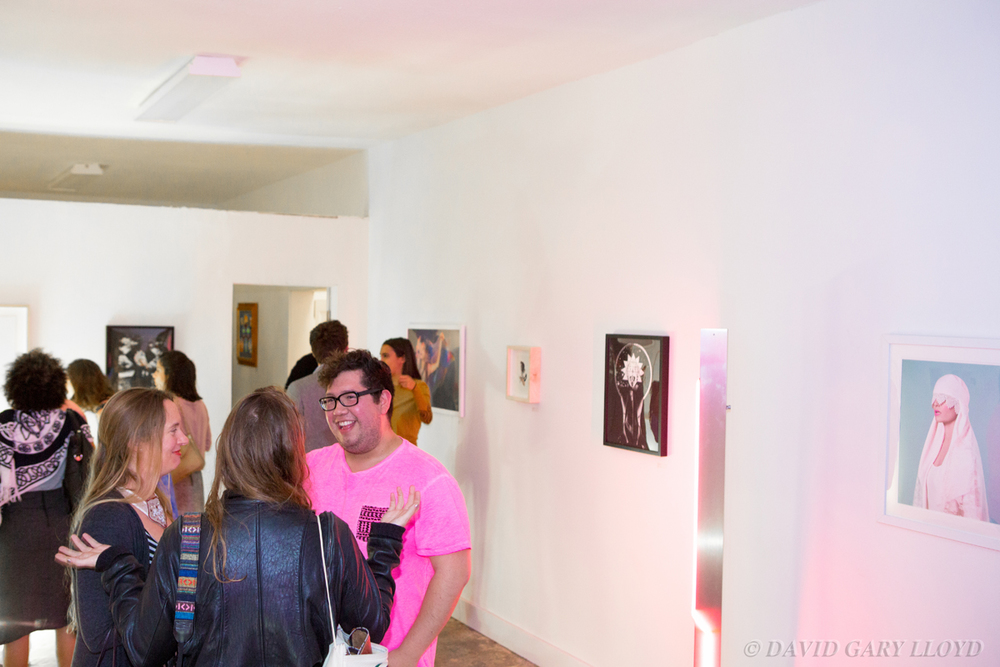 IMG_4537_ & GALLERY %22Art Show From The Future%22 Jan 2015- © David Gary Lloyd.jpg