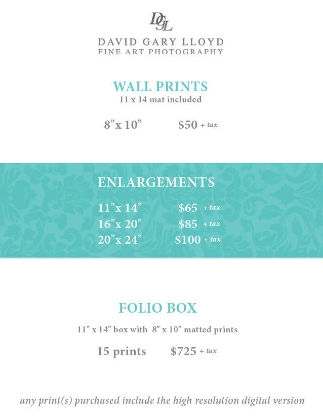 5x7 Handout Price Menu 2017.jpg