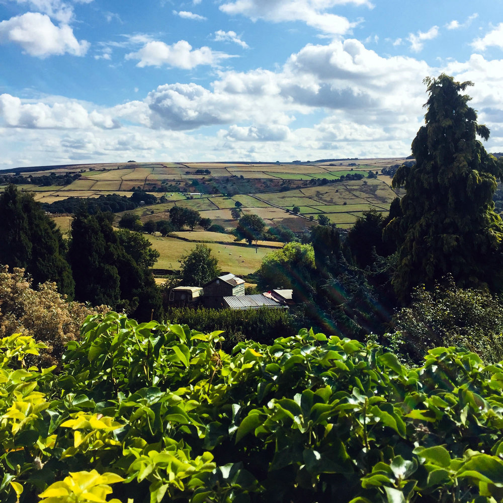 Countryside of Sheffield, England, where Andalusia Amy Dorrington Grimard was born, Diane Wilson's grandmother.