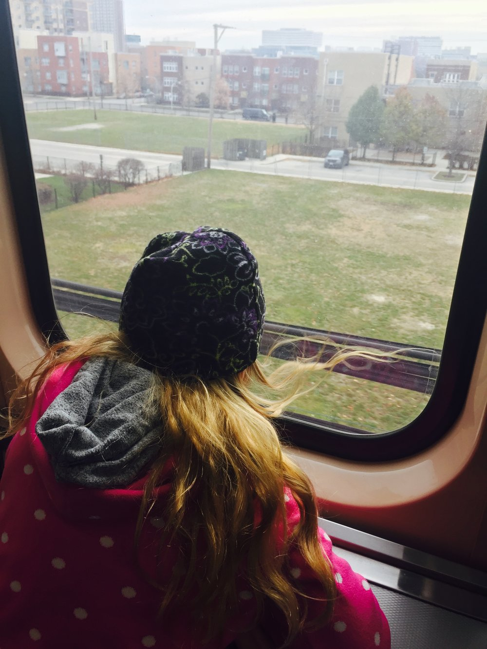 Riding the CTA Green Line from Oak Park to downtown Chicago. Photo: D. Wilson