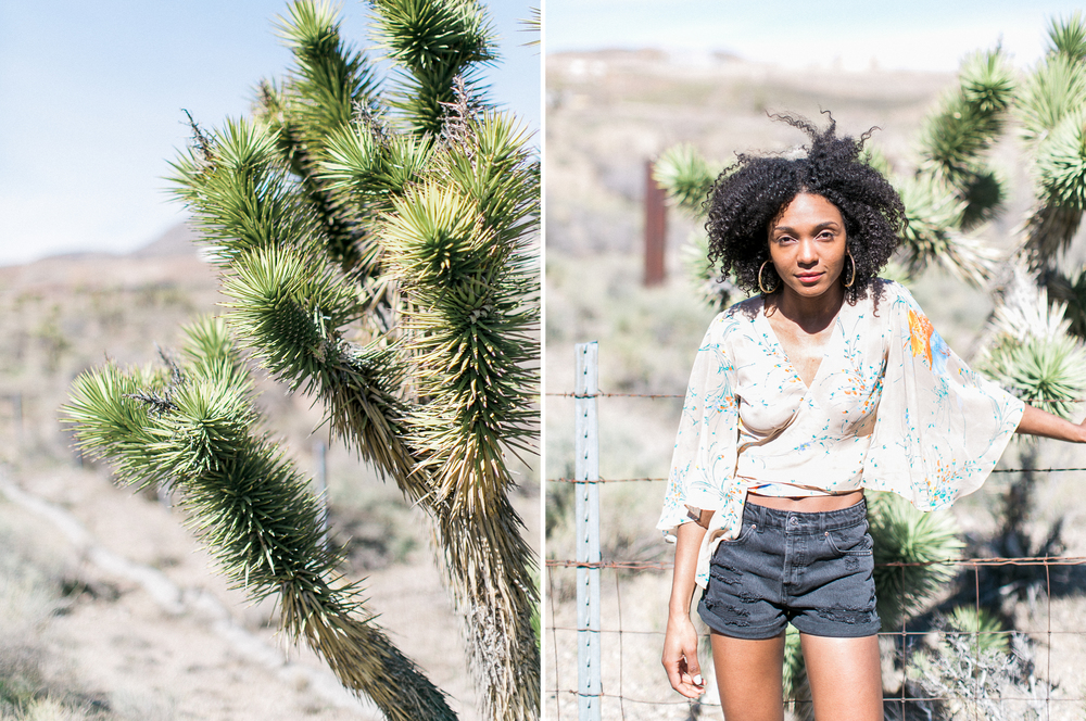 Mojave Desert J. Lee Photos Los Angeles WPPI Las Vegas