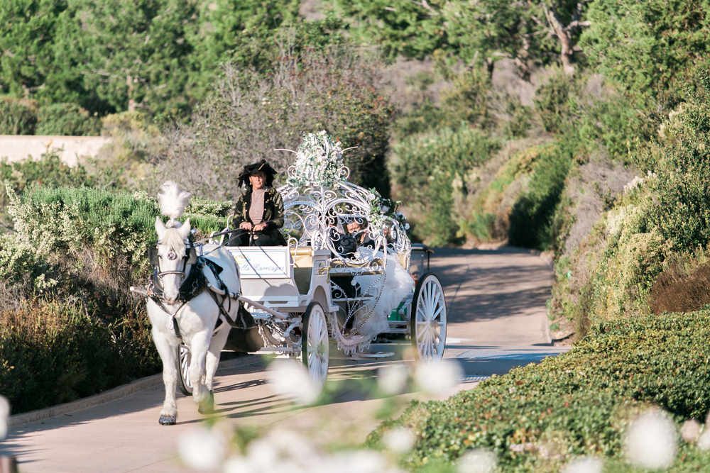 Wedding Horse Carriage Pelican Hill Resort