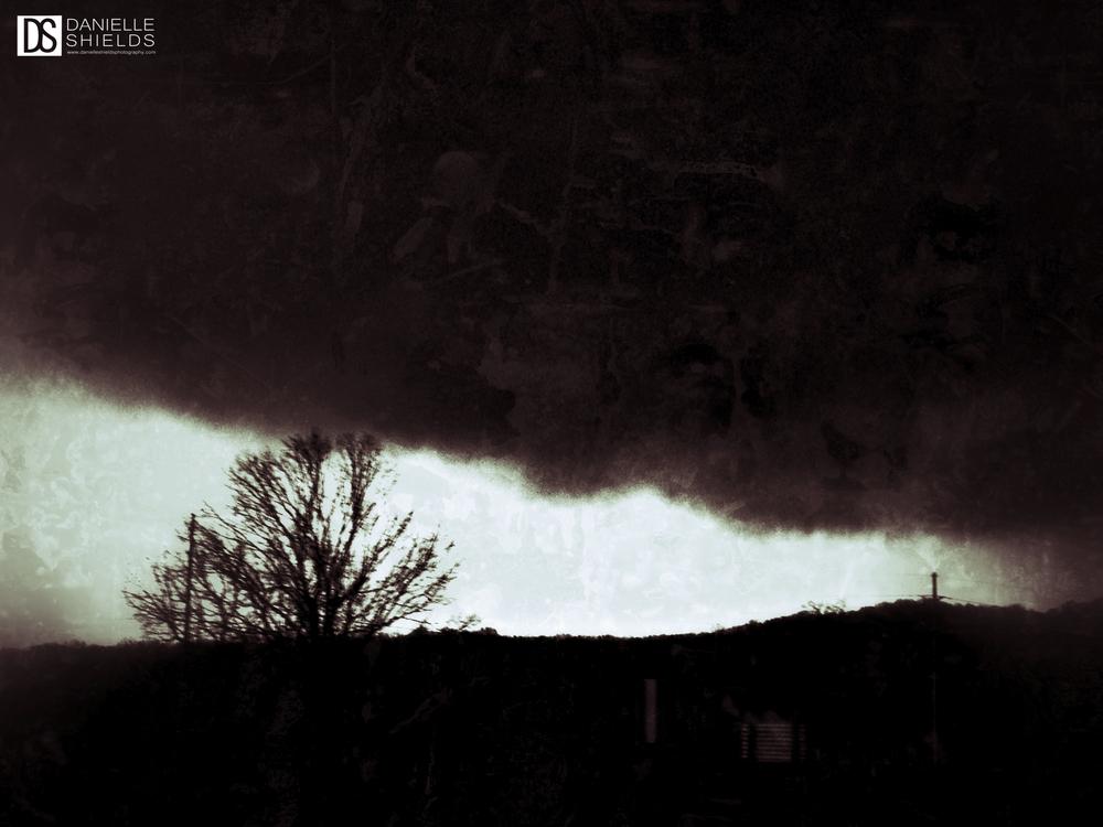 Dec Fog 5.jpg