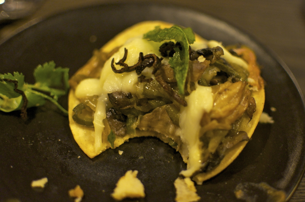 Wild mushrooms, poblano chiles, onions and cheese all melted together - a vegetarian dish that even the hungriest carnivore would enjoy.