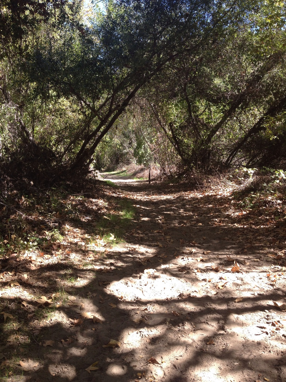 Santa Margarita County Preserve