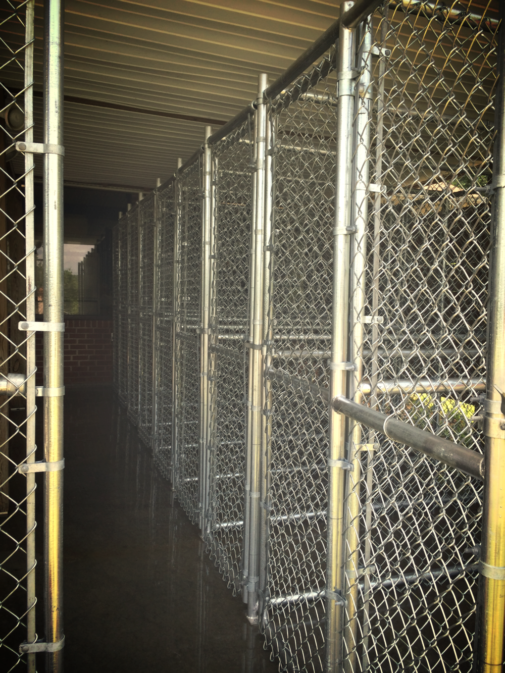 Chain Link Fence Kennels @ Riverside Veterinary Hospital in Bedford