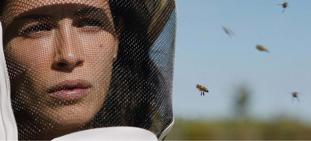 betty bees.jpg