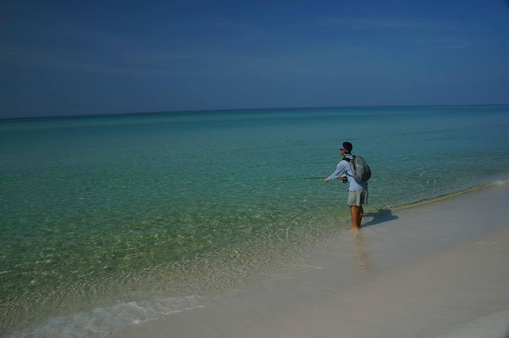 Find a secluded stretch of beach for your best chance at sight fishing.