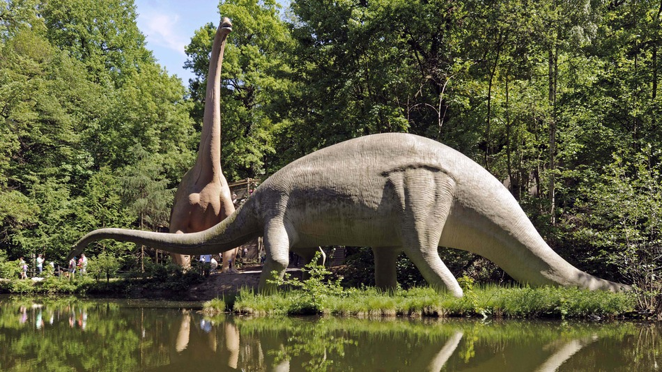 """Dinosaurs may not have been cold-blooded like modern reptiles or warm-blooded like mammals and birds — instead, they may have dominated the planet for 135 million years with blood that ran neither hot nor cold, but was a kind of in-between that's rare nowadays, researchers say.    Modern reptiles such as lizards, snakes and turtles are cold-blooded or ectothermic, meaning their body temperatures depend on their environments. Birds and mammals, on the other hand, are warm-blooded, meaning they control their own body temperatures, attempting to keep them at a safe constant — in the case of humans, at about 98.6 degrees Fahrenheit.    Dinosaurs are classified as reptiles, and so for many years scientists thought the beasts were cold-blooded, with slow metabolisms that forced them to lumber across the landscape. However, birds are modern-day dinosaurs and warm-blooded, with fast metabolic rates that give them active lifestyles, raising the question of whether or not their extinct dinosaur relatives were also warm-blooded.     Animal metabolism     To help solve this decades-old mystery, researchers developed a new method for analyzing the metabolism of extinct animals. They found """"dinosaurs do not fit comfortably into either the cold-blooded or warm-blooded camp — they genuinely explored a middle way,"""" said lead study author John Grady, a theoretical ecologist at the University of New Mexico.    Scientists often seek to deduce the metabolisms of extinct animals by looking at the rates at which their bones grow. The method resembles cutting into a tree and looking at the thickness of the rings of wood within, which can reveal how well or poorly that tree grew any given year. Similarly, looking at the way bone is deposited in layers in fossils reveals how quickly or slowly that animal might have grown.    Grady and his colleagues not only looked at growth rings in fossils, but also sought to estimate their metabolic rates by looking at changes in body size as animals grew"""